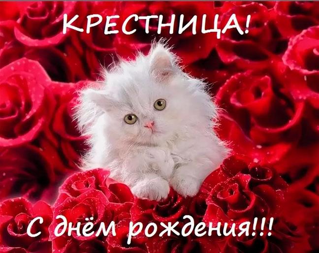 s-dnem-rozhdeniya-krestnica-pozdravleniya-otkritki foto 16